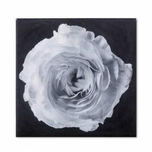 Black & White Flower Photograph - B